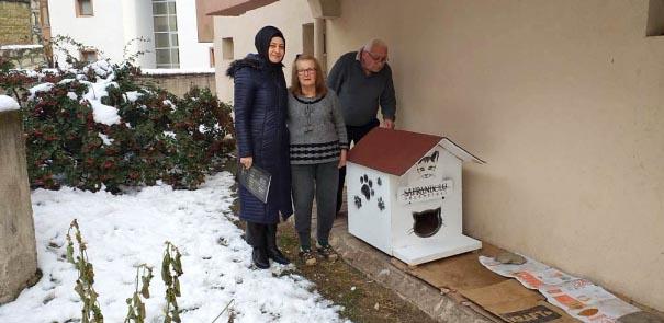 Safranbolu Belediyesi sokak hayvanlarına barınak