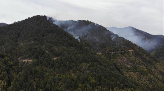 Eskipazar'daki orman yangını kontrol altına alındı